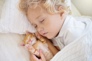 Toddler baby boy asleep with a kitten on cream sheets to represent how toddler sleep training can help toddlers who won't sleep.